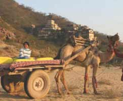 Neemrana Tour Package